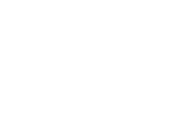 Equine Excellence